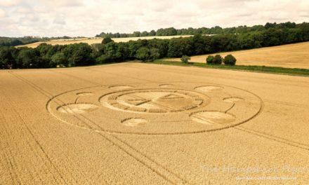 2021 Circles: Spiers Lane, Alresford, Hampshire