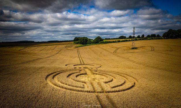 2021 Circles: Watership Down, Nr Ashley Warren, Hampshire