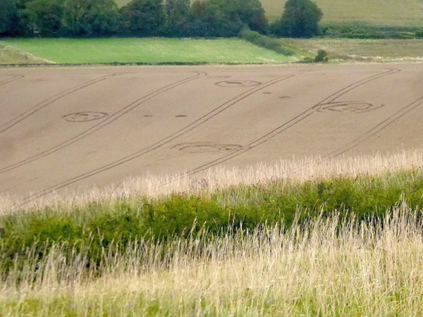 2021 Circles: Wilmington Long Man, East Sussex